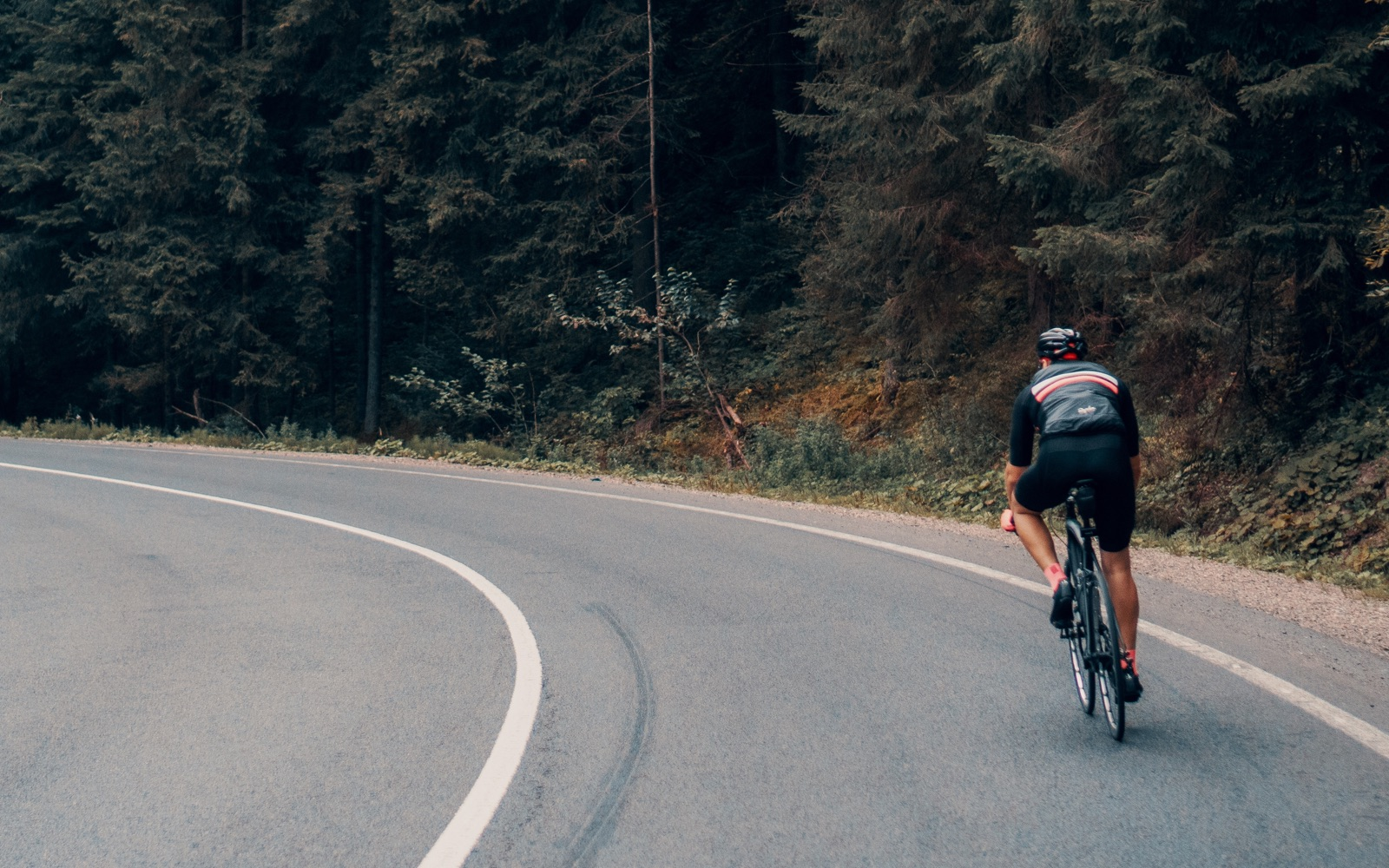 The Ultimate Roadbike Guide